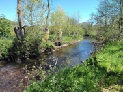 River in May